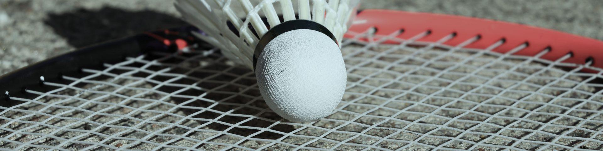 Badminton Besaitung Kassel